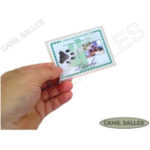 RG_animal_caes_cao_gato_cachorros_calopsitas_passaros_ratos_identidade_identificacao_placas_identidade+plaquetas_micro_chip_microchip_documento_RGA_12